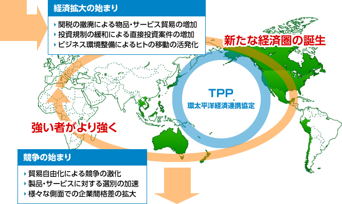 TPP戦略株式ファンド【ファンド...